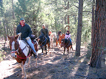 Trail ride up the hill