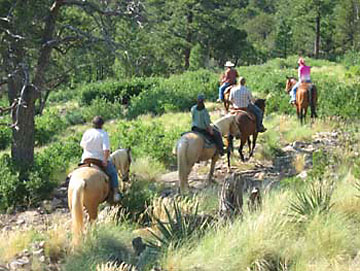 Group trail ride through the forest